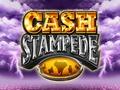 Cash Stampede Dice