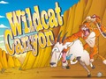 Wildcat Canyon Dice