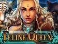Feline Queen
