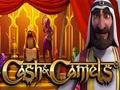 Cash & Camels