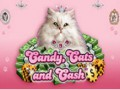 Candy, Cats and Cash