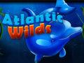Atlantic Wilds